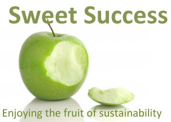 Sweet Success by Elisabeth Anderson